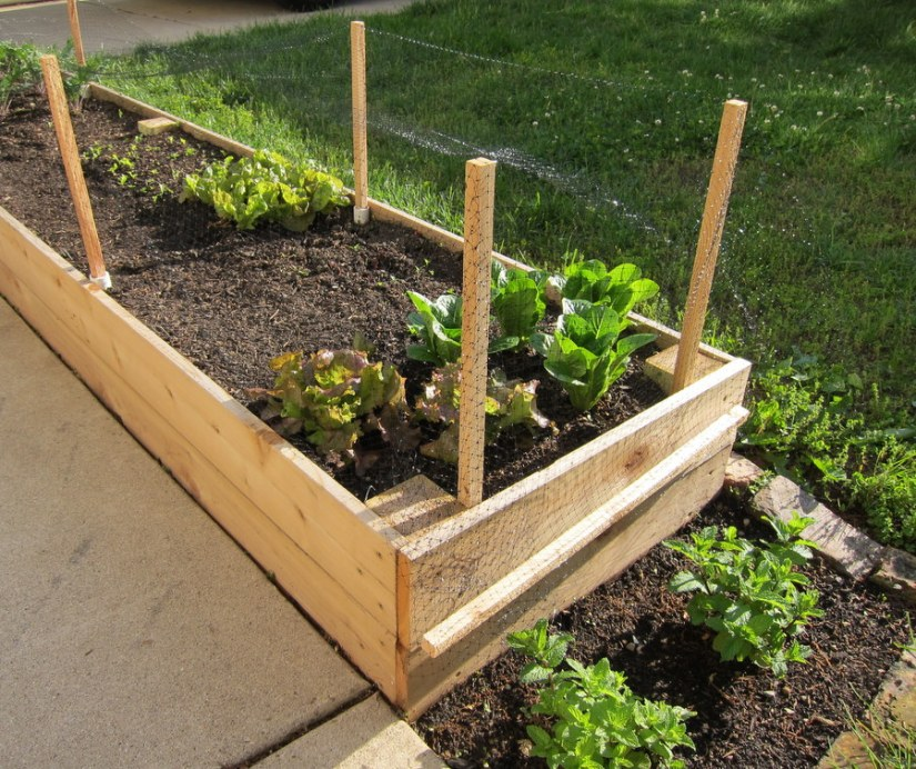 Raised Bed Garden Netting