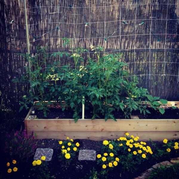 Garden Trellis Netting