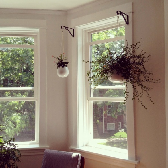 Hanging Planters
