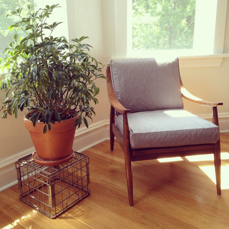 Living Room Chair with Cover