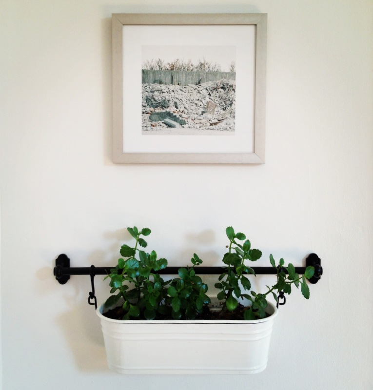 IKEA FINTORP Rail with Plant