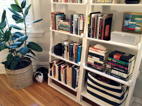 Leaning Bookcase Cat