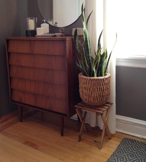 Plant Baskets & JewelryStorage