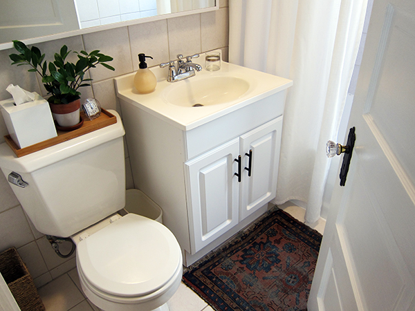 Bathroom Door and Antique Rug | Project Palermo
