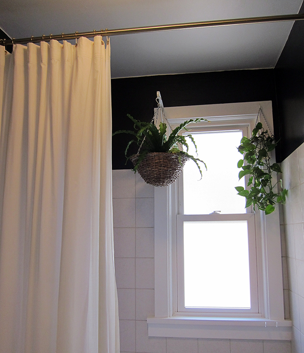 Bathroom Window and Hanging Plants | Project Palermo