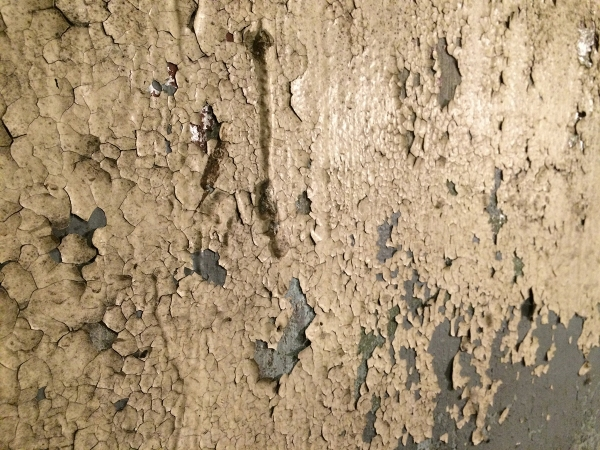 Basement Wall Before.JPG