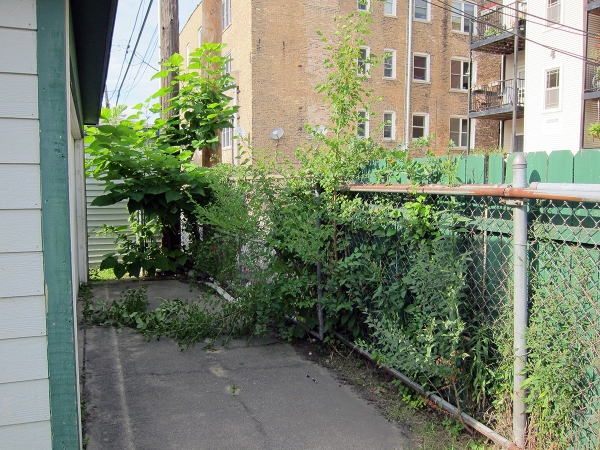 garage-fence-back