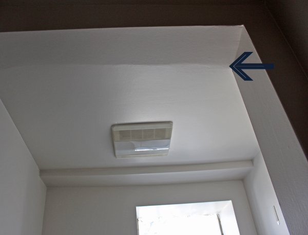 Ceiling Ridge 2.jpg