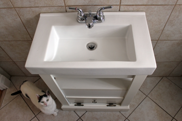 Half Bath Sink.jpg
