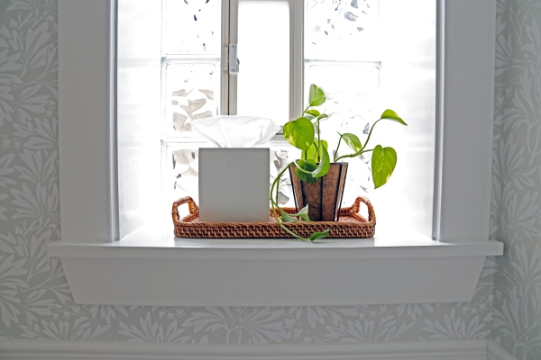 Bathroom Window Sill.jpg