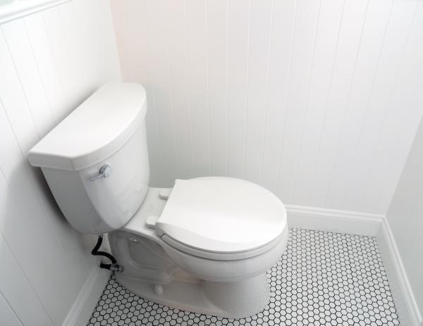 Kohler Toilet.jpg