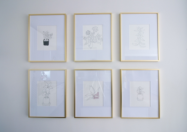 Framed Plant Drawings.jpg
